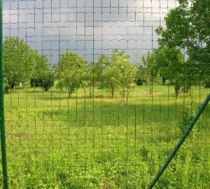 Színes kerítés