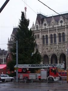 Autódaru és karácsonyfa