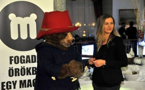 Paddington-maci Andy-nek és Timinek