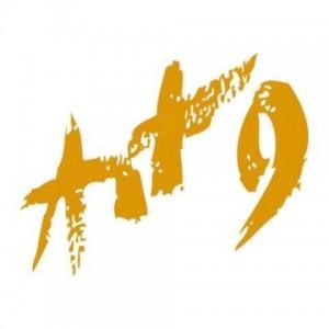 Art9 Galéria