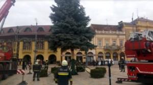 Debreceni karácsonyfa-állítás 2017