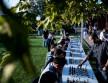 Morgan Stanley Sakk Piknik 4