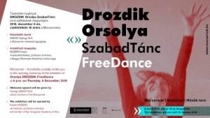 Drozdik Orsolya meghívója