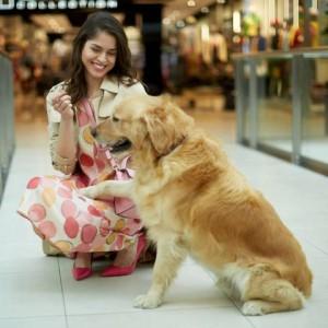 Kutya és gazdája a MOM Parkban